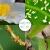 zhongbao(ZhB)zhongbaoアビ菌ジンアブラムシ、赤蜘蛛の花の苗木園林殺虫剤10 g袋入り