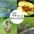 リボハイクロロカビド塩水稲山菜果物抗性野菜青虫おかず蛾巻葉メイチュウリキューム農薬殺虫剤300 mlのオプションは重さ提示があります。