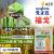 先正達福戈塩素虫フェニルイルアミドチアムシジン40%稲縦巻葉メイチュウ二化ニカメイチュウ褐飛虫剤4 g